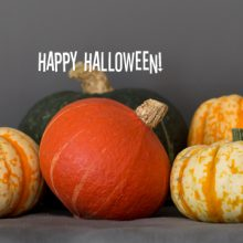 Happy-Halloween-pumpkins-award-winning-photorapher-Nikki-Kirk-Carle-and-Moss-Commercial-Photographers.jpg