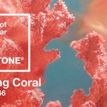 Pantone-Colour-2019-Living-Coral